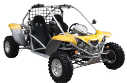 Rent-a-buggy